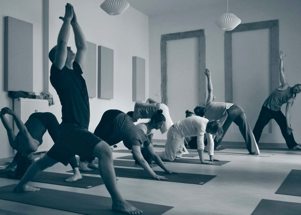 Ashtanga Yoga Basic in Dresden